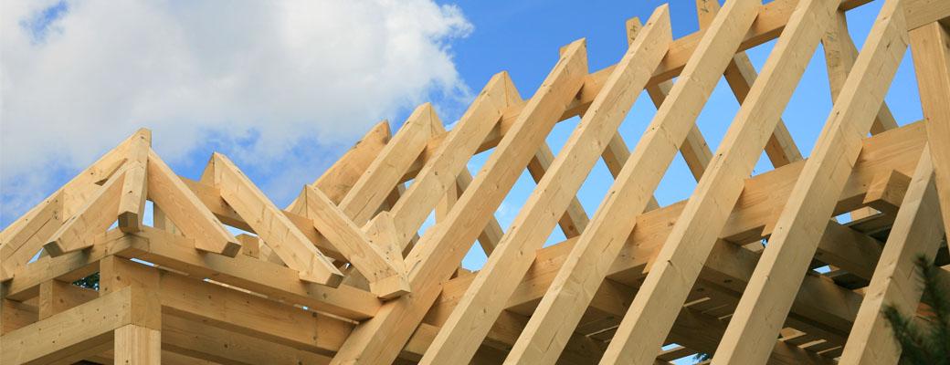 Esche Holzbau